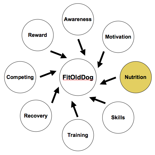 The FitOldDog Training Wheel comes to nutrition, one of the keys to a healthy happy life. From: http://goo.gl/Es6PF
