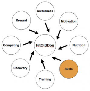 The FitOldDog Training Wheel approaches skill development, where you are encouraged to think about guidance from all possible sources, and then to not think too much. From: http://goo.gl/Es6PF