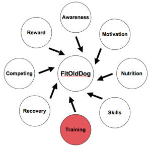 This spoke of the FitOldDog Training Wheel is red to indicate danger of injury. Beware and relax, the paradox of safe training for better health. From: http://goo.gl/Es6PF