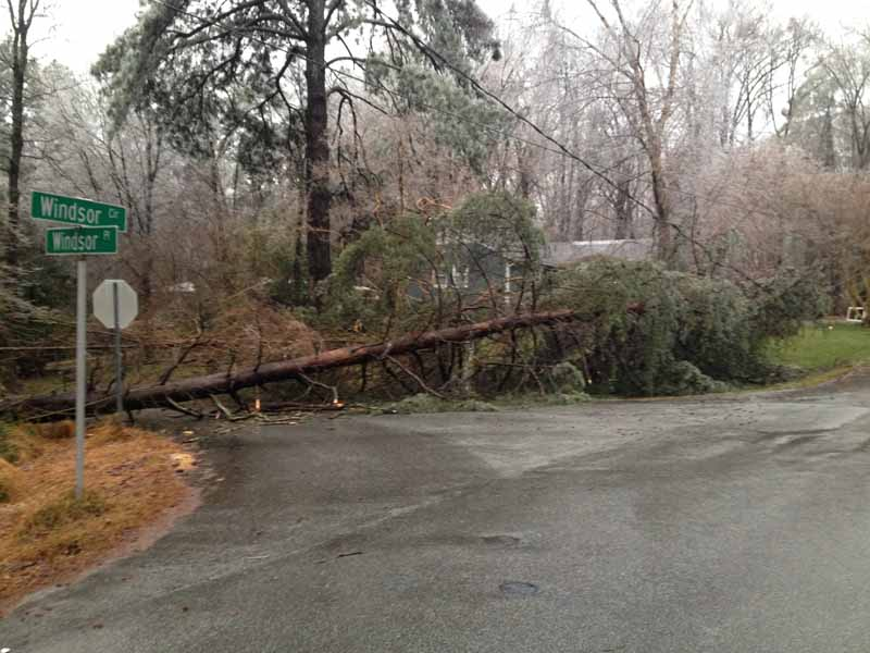 Trees down due to Ice Storm in North Carolina, USA