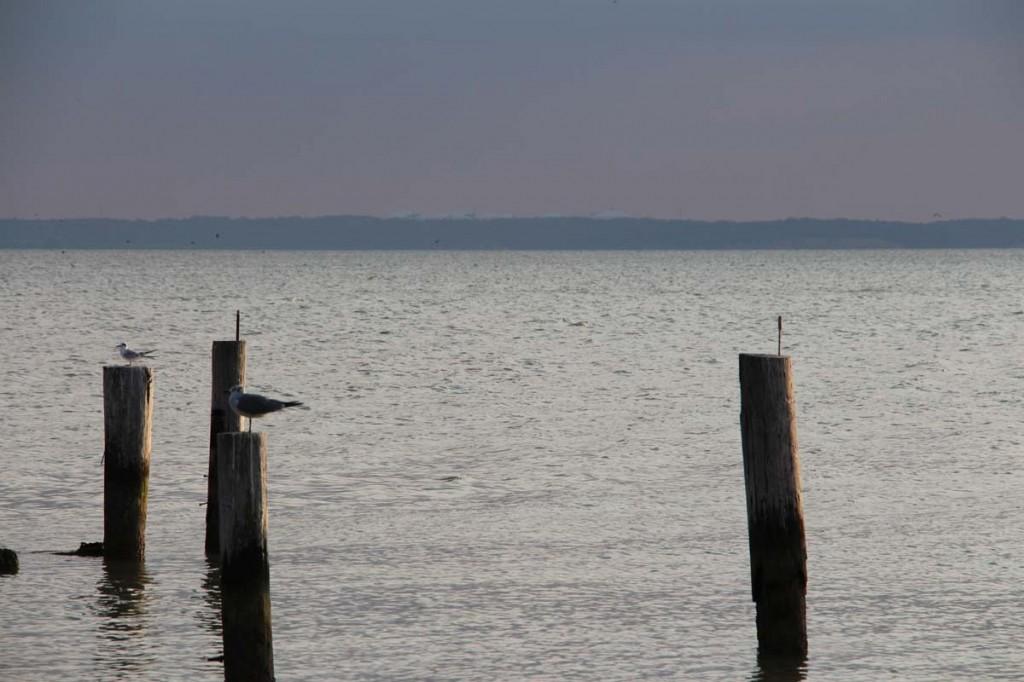 Evening on Chesapeake Bay